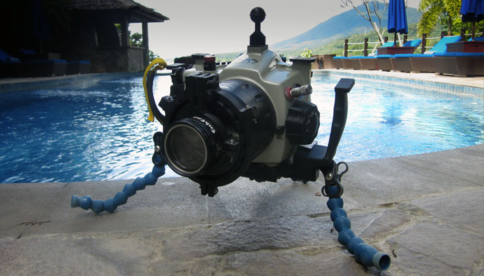 If you shoot Underwater Macro Video, Use a TRIPOD!