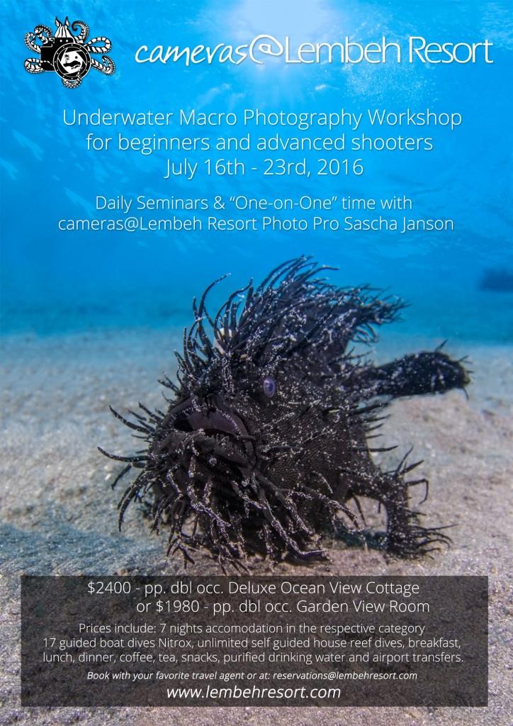Flyer-Workshop-July---english
